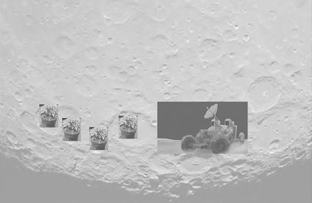 moontravel1.jpg